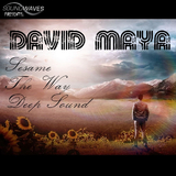 Nothing yet Everything by David Maya mp3 download