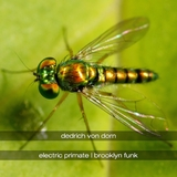 Electric Primate & Brooklyn Funk by Dedrich Von Dorn mp3 download