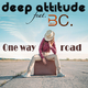 Deep Attitude feat. Brown C. One Way Road