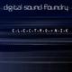 Digital Sound Foundry E.L.E.C.T.R.O. - N.I.K.