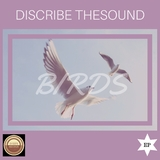 Birds by Discribe Thesound mp3 download
