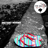 Flip Flop by Distant Noises mp3 download