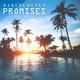 Djschluetex Promises(Radio Version)