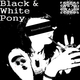 Einzelkuenstler Black & White Pony
