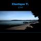 Elastique V. Love