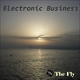 Electronic Business The Fly