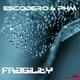 Escodero & PHM Fragility