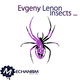 Evgeny Lenon Insects