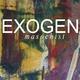 Exogen Masochist