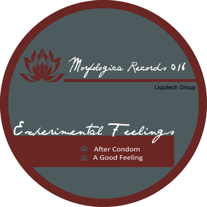 Experimental Feelings  - Good Feelings (Morfologica Records)