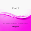 Spark (Nico Pusch Remix) by Feinkost mp3 downloads