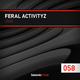 Feral Activityz Violin