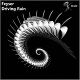 Driving Rain by Feyser mp3 download