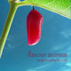 Flavour Animus tulpensymphonie