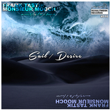 Sail / Desire by Frank Tastik & Monsieur Mooch Meets Vogel & Hauter mp3 download