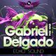 Gabriel Delgado Echo Sound (Remix 2014)