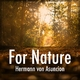 Hermann von Asuncion - For Nature