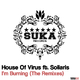 House of Virus feat. Soliaris I'm Burning(The Remixes)