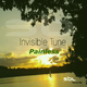 Invisible Tune Painless