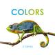 J. Torres Colors