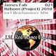 James Fab Reborn