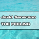 Javid Senerano The Feeling