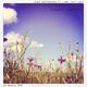 Jens Guetschow feat. Amy Capilari Summer Deepness