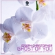 Joseph Christopher Ghost of You(Extended 12 Inch Club Anthem Mix)