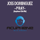 Joss Dominguez Pray(Acuphene Club Mix)