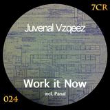 Work It Now by Juvenal Vzqeez mp3 download