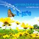 K-Jano We Need Summer