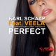 Karl Schaap feat. Veela Perfect