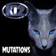 Ki2 Mutations