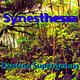 Kristina Supergenius - Synesthesia