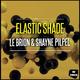 Le Brion & Shayne Pilpel - Elastic Shade
