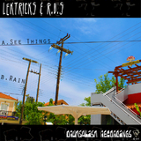 See Things/Rain by Lektricks & R.D.S mp3 download