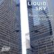 Liquid Sky Retrospective Analysis