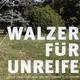 Lothar Von Versen Walzer für Unreife