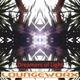 Loungeworx Dreamers of Light - Sonhadores da Luz