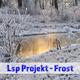 Lsp Projekt Frost