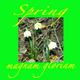 Magnam Gloriam Spring