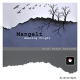 Amazing Flight by Mangelt mp3 download