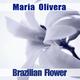Maria Olivera Brazilian Flower