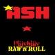 Mark Ash Hillybilly Raw 'n' Roll