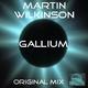 Martin Wilkinson Gallium (MW Mix)