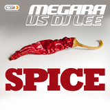 Spice by Megara vs DJ Lee mp3 download