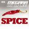 Spice (Single Edit) by Megara vs DJ Lee mp3 downloads