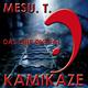 Mesu.T. Kamikaze
