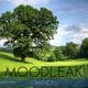 Moodleak Chances