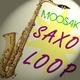 Moosak Saxo Loop